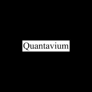 quant2-01